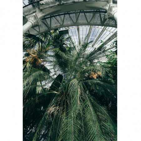 Inspired By Tørklæde, Botanical Garden, Uld, Botanisk Have, motiv